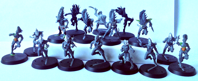 Dark Elves Blood Bowl Team