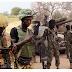 Boko Haram terrorists killed, dozens arrested: Army