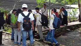 Faktor sosial merupakan salah satu penyebab kerusakan hutan di Indonesia. Faktor sosial meliputi kebakaran hutan, perladangan, penggembalaan ternak, dan pencurian hasil hutan. Kerusakan hutan umumnya tidak terlepas dari kegiatan sosial manusia. Kegiatan tersebut sangat erat kaitannya dengan peran manusia untuk melangsungkan kehidupannya sehari-hari.