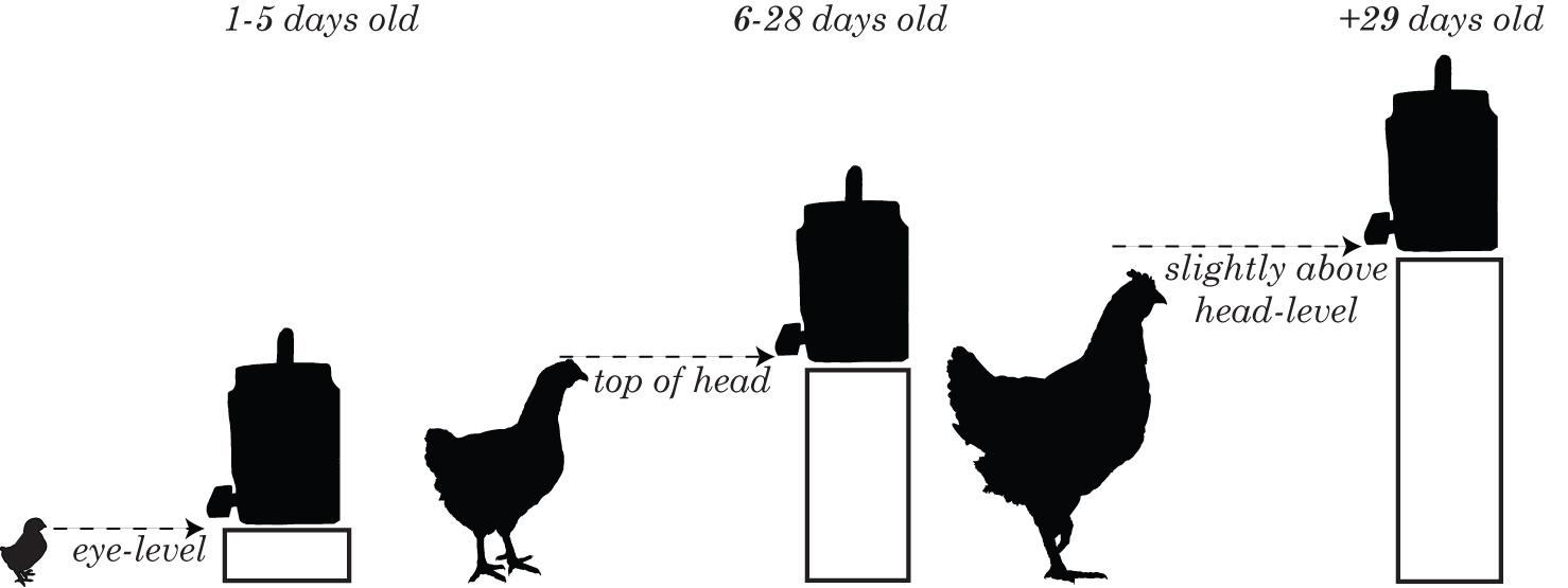 Chicken Coop Automatic Door. DIY Solar Powered Automatic