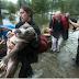 Σώζοντας τον σκύλο από την καταιγίδα...