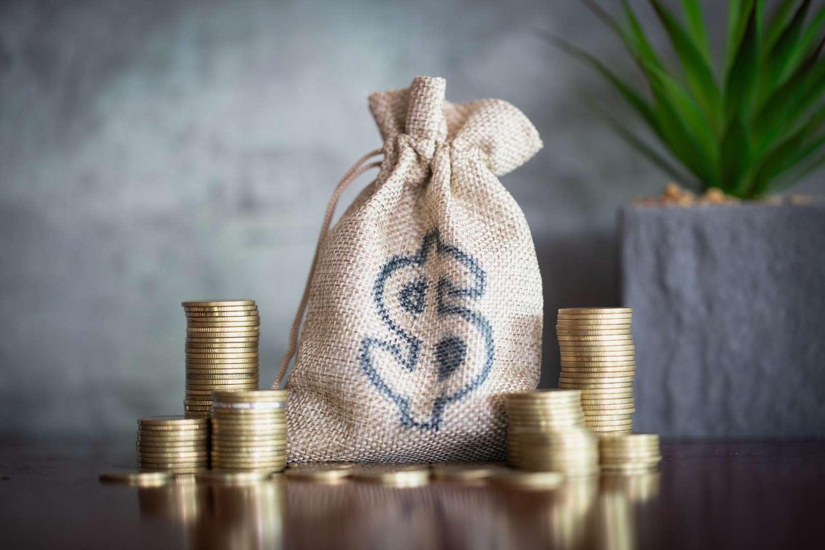 Reinvest Business Profits