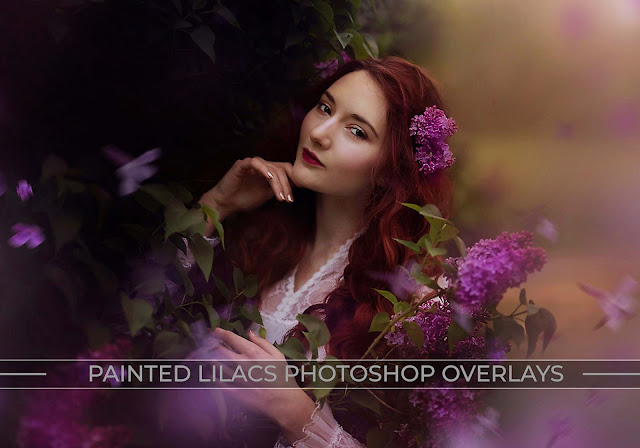 Painted Lilacs Photo Overlays