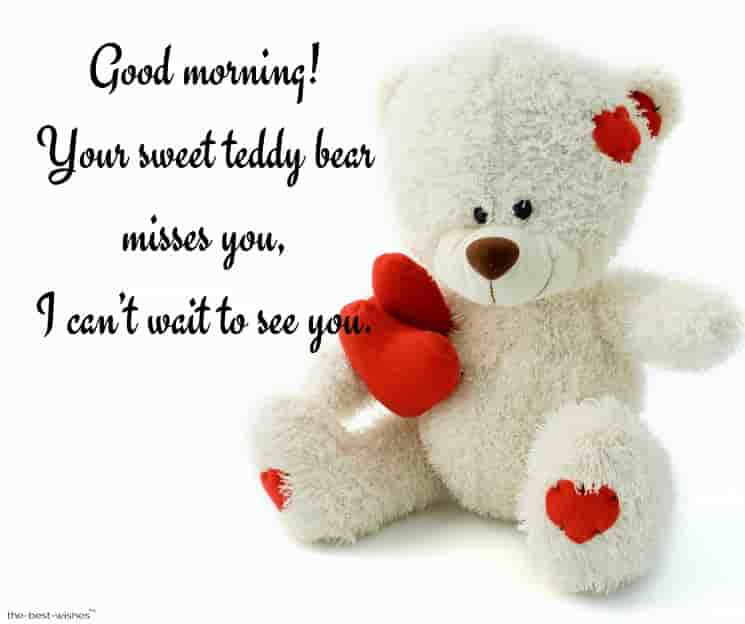miss you text message with teddy