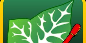 Download Ivy Draw Premium Apk V.1.32