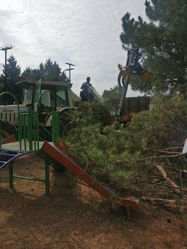 Συνεχίζονται οι εθελοντικές δράσεις στο Δήμο Αριστοτέλη -Δημοτικό Σχολείο Παλαιοχωρίου  (φώτο)