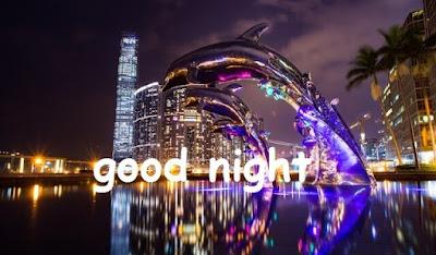 good night photo image shayari,good night photo