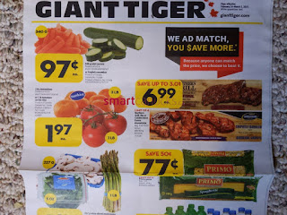 Giant Tiger Flyer valid March 3 - 9, 2021 Lower Price