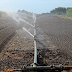 El gobierno regional aprueba actuaciones de eficiencia energética en explotaciones agropecuarias