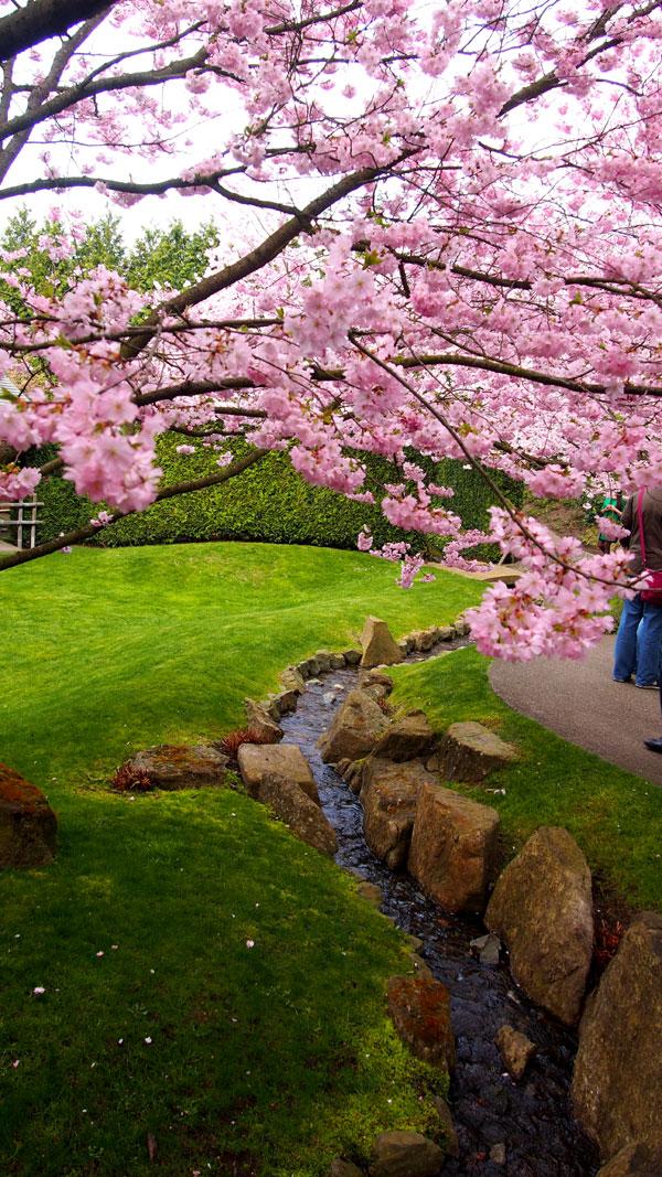 Gärten der welt ja raakasuklaa