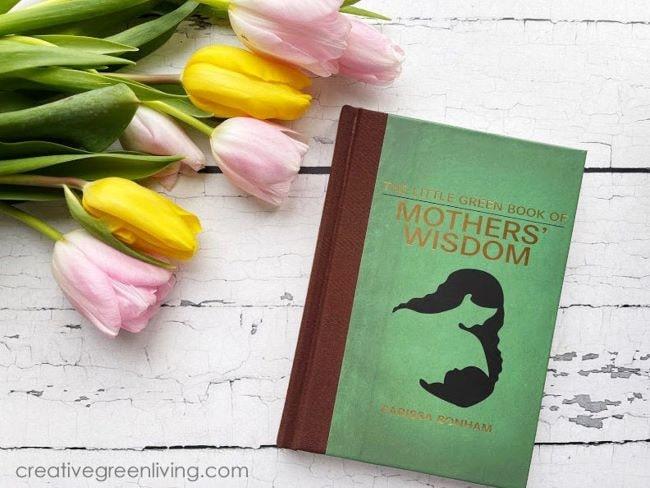 Stocking stuffer ideas for moms - Little Green Book of Mother's Wisdom Gift book by Carissa Bonham