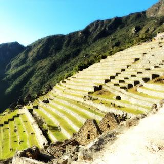 Os Terraços Dominam o Setor Agrícola de Machu Picchu