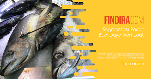 Segmentasi Usaha Budi Daya Ikan Laut