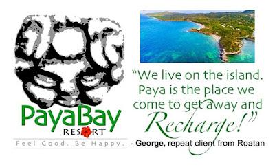 client feedback, #payabay, #payabayresort, paya bay resort, quotes, good energy,