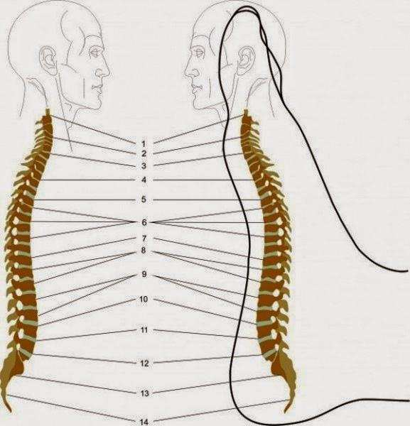 tehnicile de masaj al picioarelor te ajuta sa reduci durerile de spate