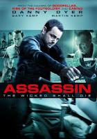 Assassin 2015 720p English BRRip Full Movie Download