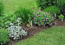 manfaat tumbuhan herbal