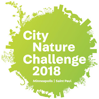 logo: City Nature Challenge 2018, Minneapolis, Saint Paul