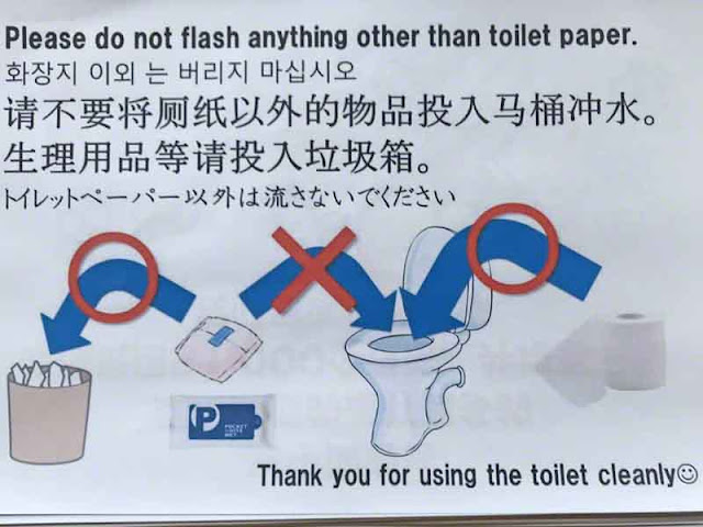 toilet, instructions, Japan, flash, flush