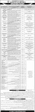 Jobs in Ministry of Defence, Islamabad - 15 September 2019