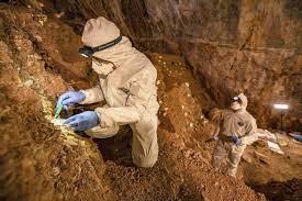 América del Norte tuvo presencia humana hace 30.000 años atrás