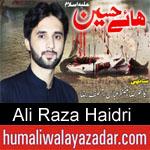 https://www.humaliwalayazadar.com/2013/12/ali-raza-haidri-audio-nohay-2007-to-2014.html