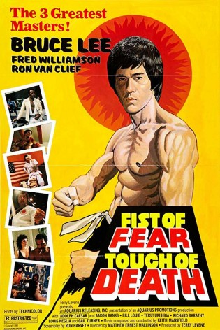 Fist of Fear Touch of Death 1980 Dual Audio 720p BRRip 1.06Gb x264