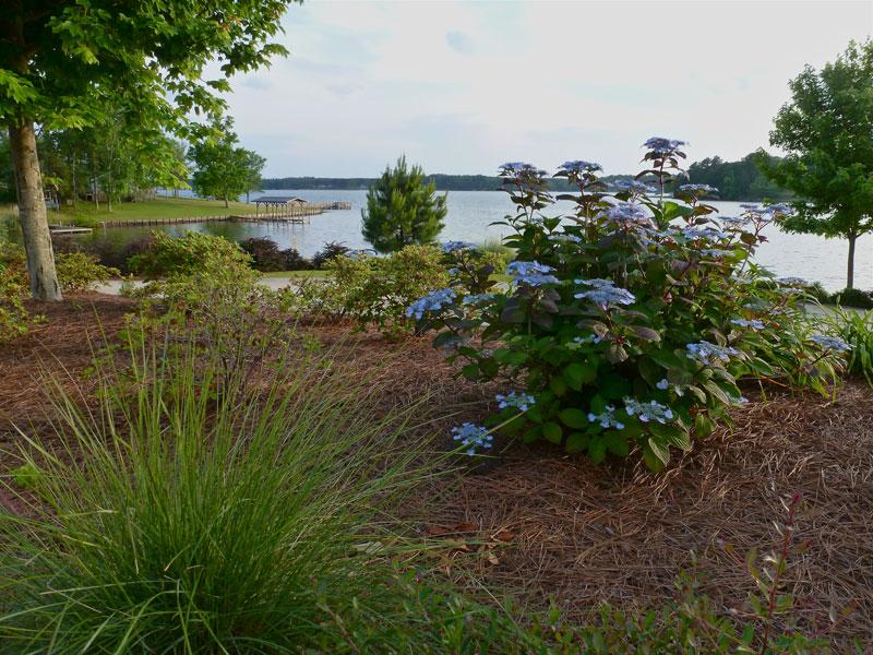 Where's Eldo?: Lake Greenwood/Cane Creek RV Resort SC