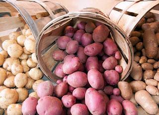 Potatoes grown in Africa soil.