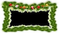 16x9 fundo Transparente e branco_Christmas_Pine png