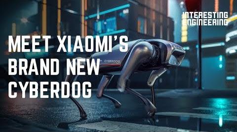 Cyberdog Xiaomi Dan Boston Dynamics