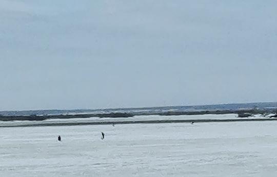 На течении уже есть участки свободной от льда воды