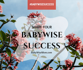 Babywise Success Stories