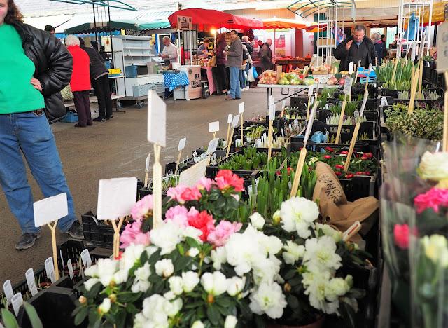 Limerick, Milk Market, kukkamyyjä