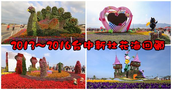 台中新社|2013~2016新社花海節、台中國際花毯節回顧