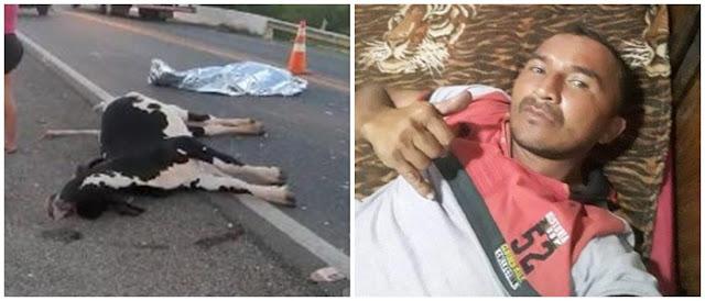 Homem de 38 anos morre após colidir moto em vaca, na BR-230 no Sertão