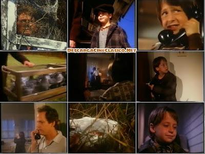 Donde mueren las palomas, (1990) Where Pigeons Go to Die, descargar y ver online en español latino...