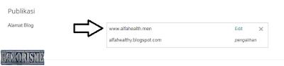 Berhasil Custom Domain Namecheap di Blogger