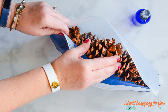 Making Scented Pine Cones