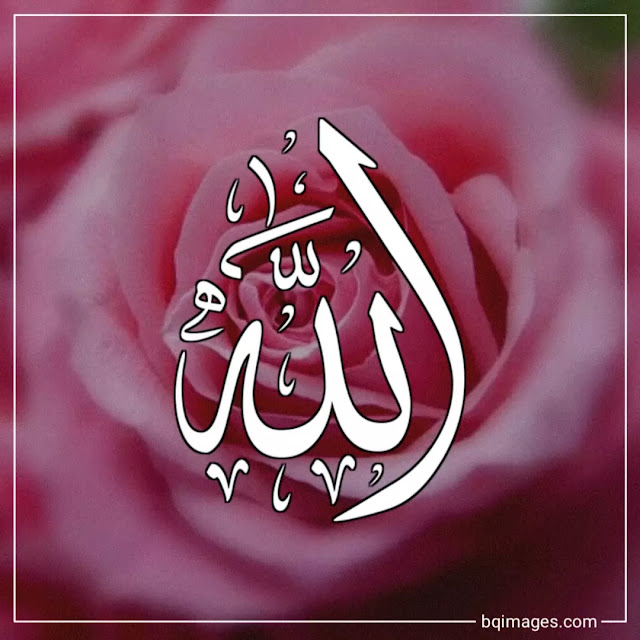 allah name dp for whatsapp