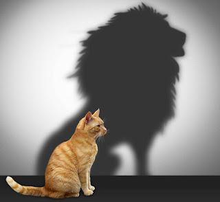 tidak percaya diri dan tidak berakal bergaul merupakan perilaku yang saling berkaitan Cara Mengatasi Minder, Tidak Percaya Diri & Tidak Pandai Bergaul