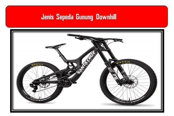 Jenis Sepeda Gunung  Downhill