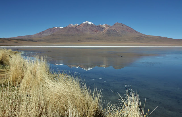 Laguna Cañapa, uma das lagunas altiplânicas da Bolívia
