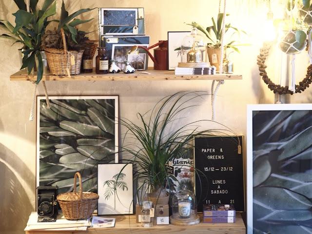 Estanterías con plantas, láminas botánicas y objetos decorativos de Paper & Greens