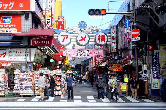 Ueno Ameyayokocho Market