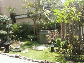 Galeri Taman - Tukang Taman Surabaya 58