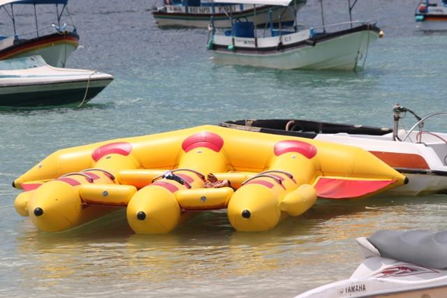 Flying Fish Di Tanjung benoa bali