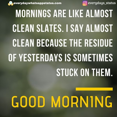 morning quotes | Everyday Whatsapp Status | Unique 20+ Good Morning Images With Quotes