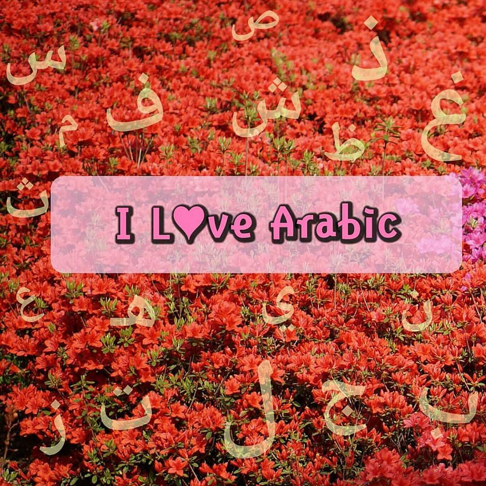 Arti Bahasa Inggrisnya Naik: Kata Tanya Dalam Bahasa Arab