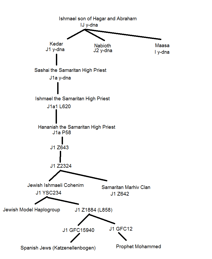 the j1 p58 found among jewish samaritan cohenim belong to j1 p58 zs223 which branched off at the time of the jewish diaspora of 70 ad and are the so called  [ 808 x 984 Pixel ]